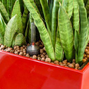 beplantingsplan1 - - interieurbeplanting kantoorplanten kantoorbeplanting hydrocultuur onderhoud planten plantenonderhoud moswand moswanden
