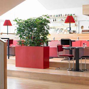 roomdivider1 - afscheiding met planten ruimtes ruimten kantine eetzaal personeel - interieurbeplanting kantoorplanten kantoorbeplanting hydrocultuur onderhoud planten plantenonderhoud moswand moswanden